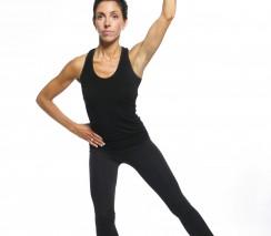 APPI Standing Pilates - Online Advanced Class
