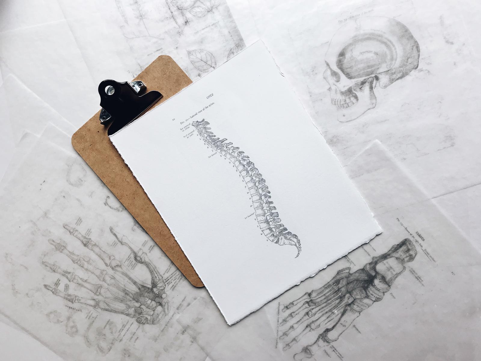 Spinal Articulation with Unite Health APPI Presenter, Eva Heraud